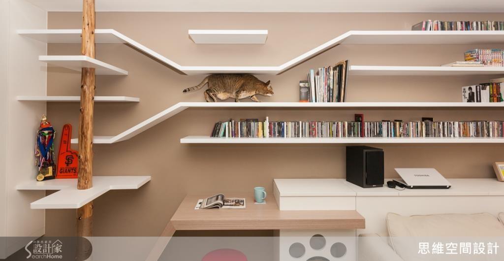 為心愛貓咪所設計的貓道和跳台,讓貓咪擁有充足的活動空間。