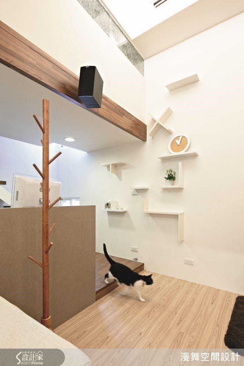 居住著三隻貓的空間,在牆面處設計了各種符號,讓貓咪得以自由的躍上躍下。