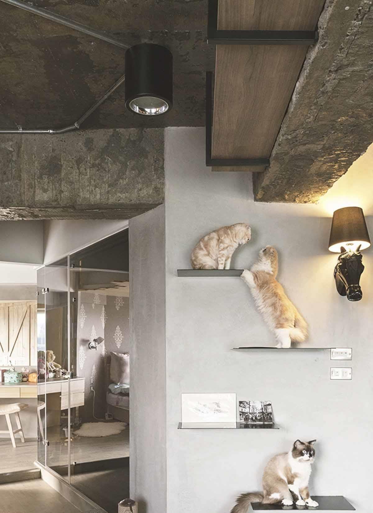 依據貓咪身長規劃的跳台。以鐵件嵌入壁面,依貓咪身長規劃出符合「貓體工學」的貓跳台,成為家中三隻愛貓的遊樂場。