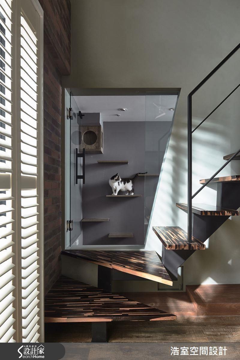 坐在沙發正對著是貓屋,透過玻璃窗隨時可以看到愛貓的動靜,往上斜的倒梯形開口呼應樓梯方向,線條的導引不言而喻。