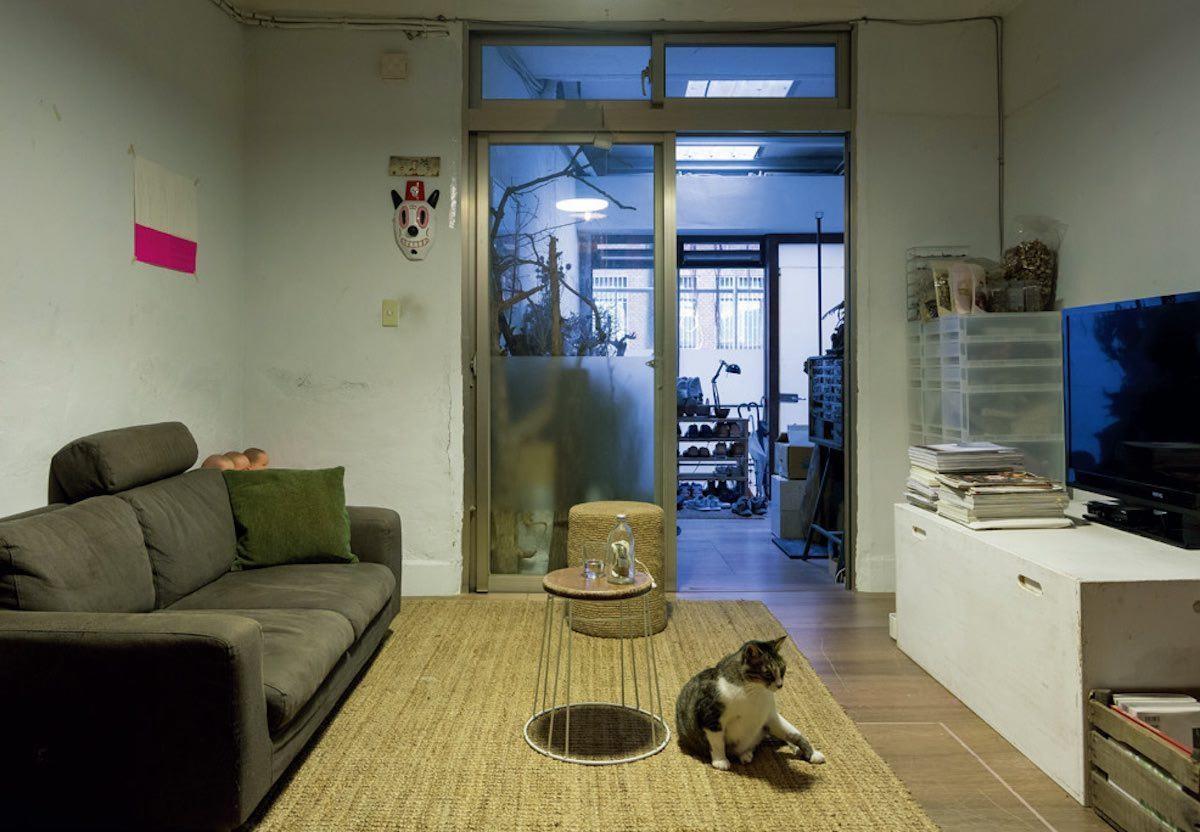 空間內的格局屬於環繞形式,無論李霽自己、工作夥伴還是兩隻貓,彼此遊走其中都不會受到干擾。