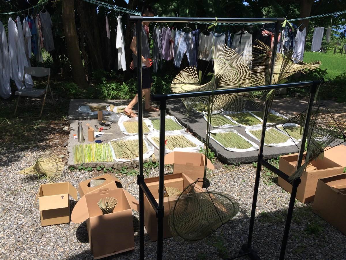 輪傘草需要經過1個月的充分曬乾,才能確保製作品質。