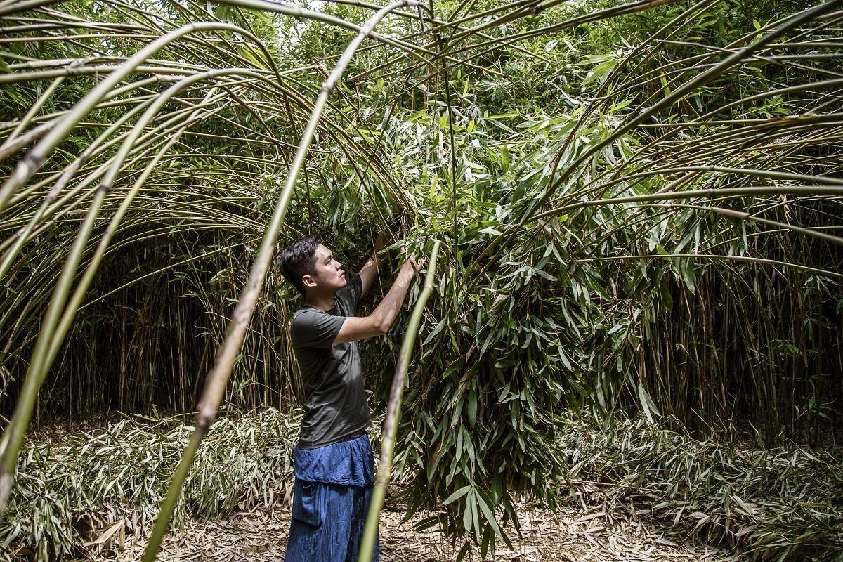 台灣年輕設計師范承宗,從討厭竹子、深入學習後進而被其中深邃的民藝給打動。