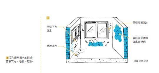 室內最常漏水的區域:窗框下方、地板、衛浴。 插畫_張小倫