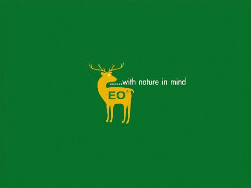 E0 級板材表面會看到浮水印,最常見到的就是這款黃金鹿的標誌。攝影_江建勳