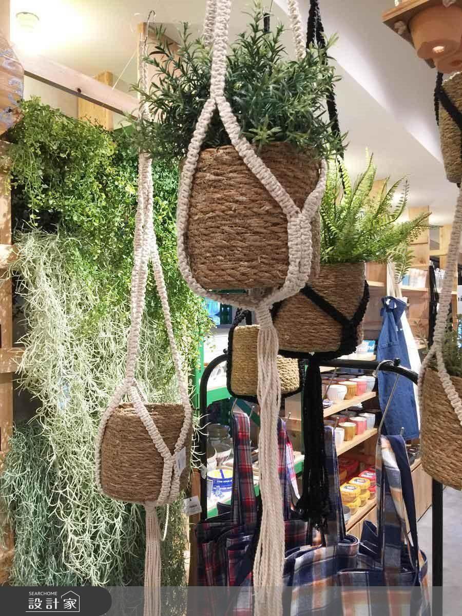 盆栽吊掛籃 (價格約NT.540)