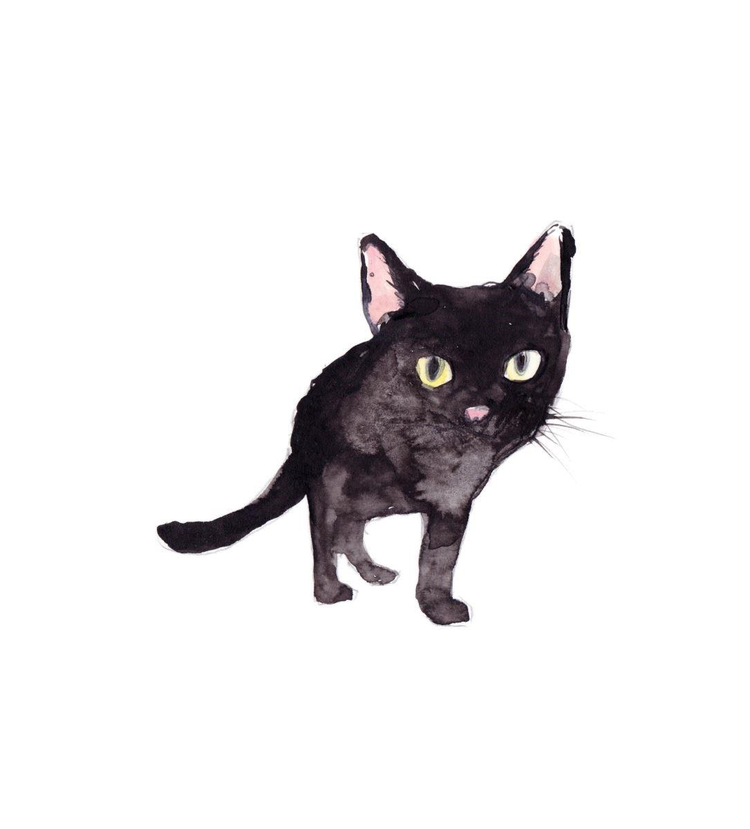 Vita Yang很喜歡貓,很常為街貓速寫。