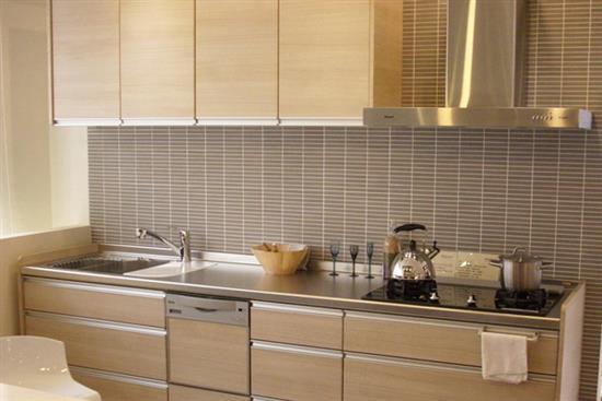 一太e衛廚itai-一太日本原裝淺木紋一字型不鏽鋼檯面系統廚具-一太Housetec日本原裝淺木紋一字型不鏽鋼檯面系統廚具,一太e衛廚itai,