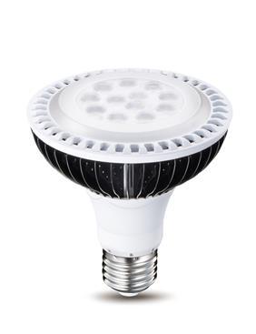 威剛照明-ADATA威剛_燈泡PAR30-ADATA威剛_燈泡PAR30,威剛科技股份有限公司,燈泡