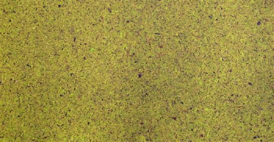 泛亞材料 PA Material -阿爾卑斯山的氣味_青色苔蘚-阿爾卑斯山的氣味_青色苔蘚,泛亞材料 PA Material ,美耐板