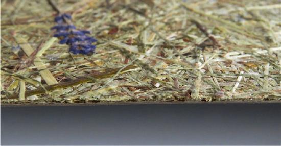 泛亞材料 PA Material -阿爾卑斯山的氣味_高山乾草和薰衣草-阿爾卑斯山的氣味_高山乾草和薰衣草,泛亞材料 PA Material ,美耐板