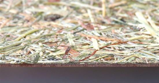 泛亞材料 PA Material -阿爾卑斯山的氣味_乾草-阿爾卑斯山的氣味_乾草,泛亞材料 PA Material ,美耐板