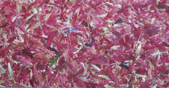 泛亞材料 PA Material -阿爾卑斯山的氣味_嫣紅矢車菊-阿爾卑斯山的氣味_嫣紅矢車菊,泛亞材料 PA Material ,美耐板