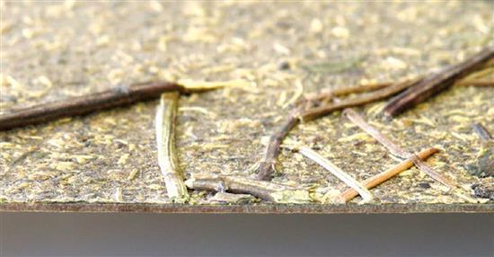 泛亞材料 PA Material -阿爾卑斯山的氣味_薄荷的莖-阿爾卑斯山的氣味_薄荷的莖,泛亞材料 PA Material ,美耐板